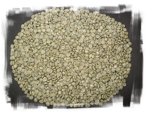 COLOMBIA SUPREMO HUILA 1LB - UNROASTED